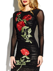 Sexy Dresses See-through Lace Embroideried Long Sleeves O-neck Dress For Women