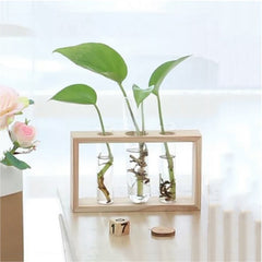 Creative Wooden Glass Living Room Desk Hydroponic