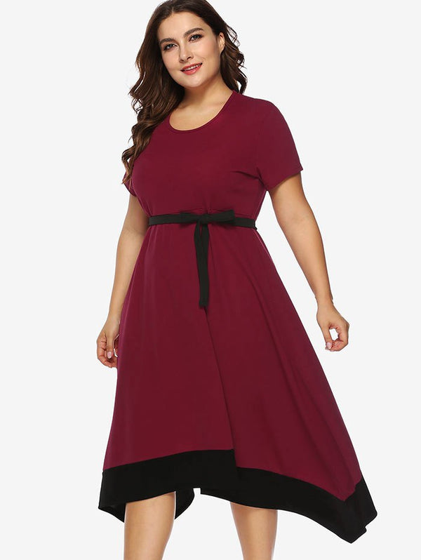 Plus Size Contrasting Trim Asymmetrical Dress