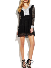 Sexy Dresses Sexy Lace See-through V-neck Long Sleeve Mini Dress For Women
