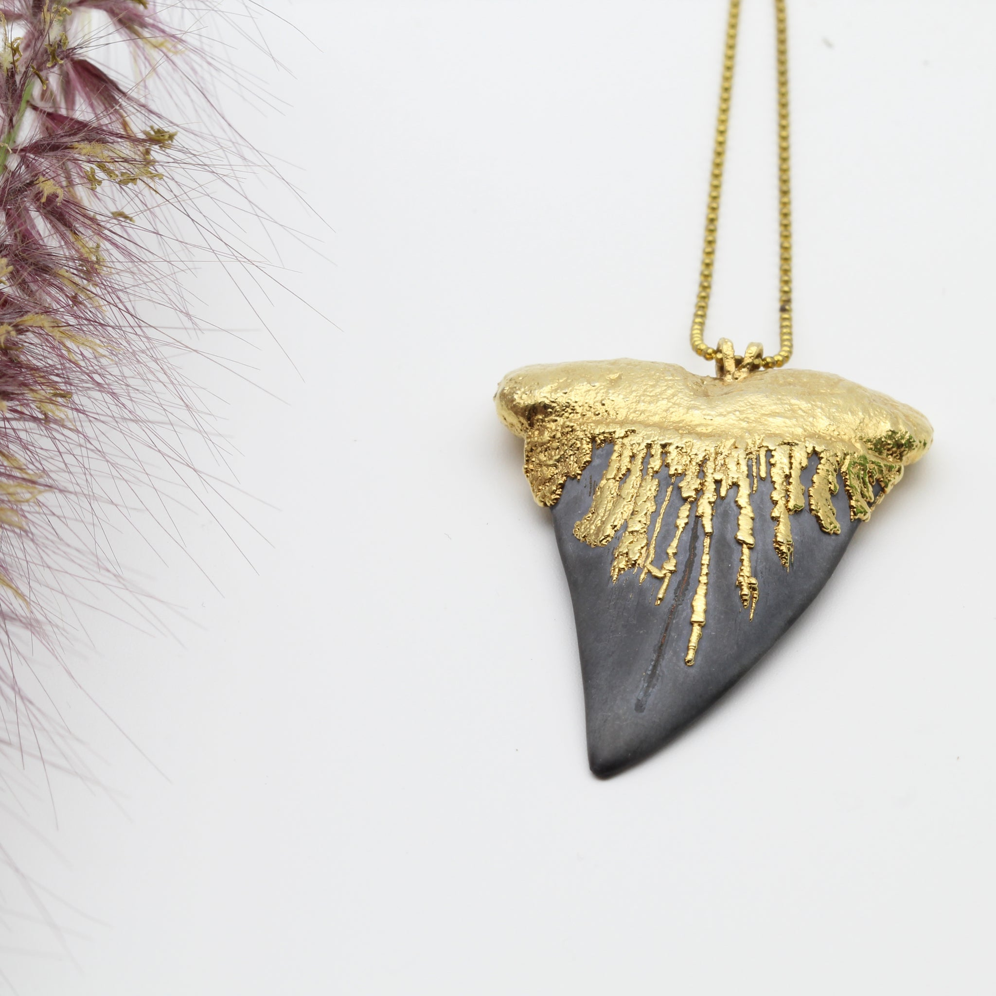 Gold dip Megalodon Shark's Tooth