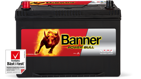 Banner Power Bull 12 Volt 95Ah