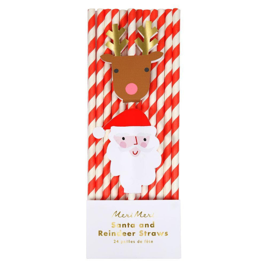 Santa & Reindeer Straws (Pack of 24)