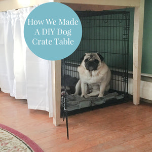 photo of a fawn pug sitting in a large dog crate with a table over it and a white curtain over the front with a teal colored circle containing the words How We Made A DIY Dog Crate Table in white