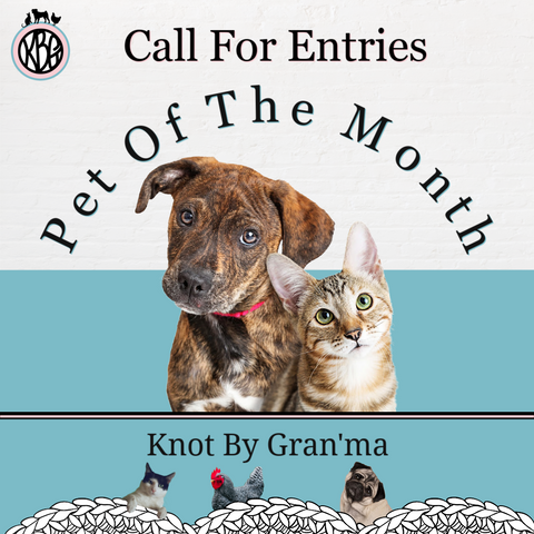photo of a cat and dog next to each other with the words Pet Of The Month arched overhead and Call For Entries above the arched lettering. The Knot By Gran'ma logo is in the upper left hand corner and the Knot By Gran'ma banner is below the cat and dog.