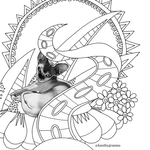Coloring page featuring a pink Sphynx cat with flowers, geometric shapes and a giant tentacle