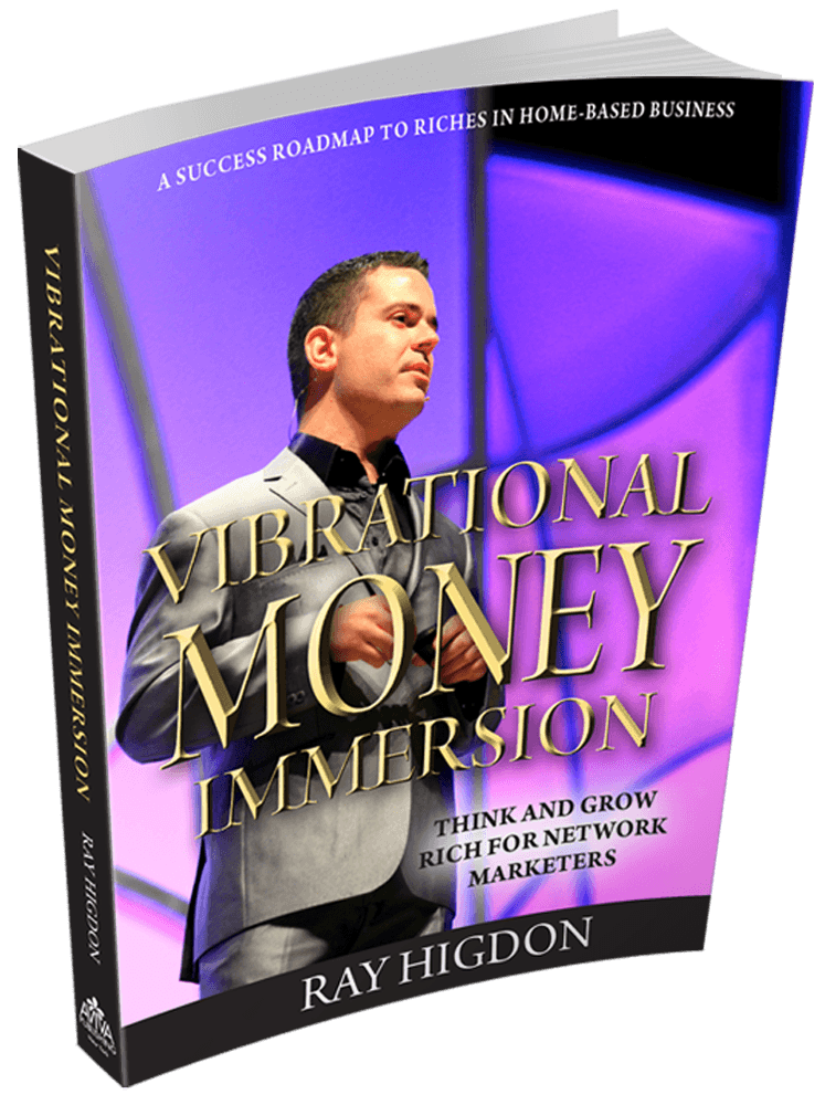 Vibrational Money Immersion Book