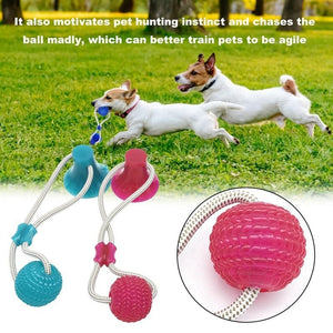 Pet Dog Toy Silicon Suction Cup - multi purpose interactive toy - worldgad