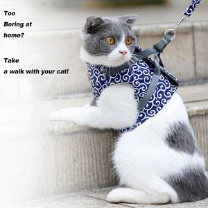 Amazing Safe Cat Vest and Harness Set - worldgad
