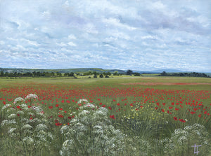 Alnwick from the Poppy Field