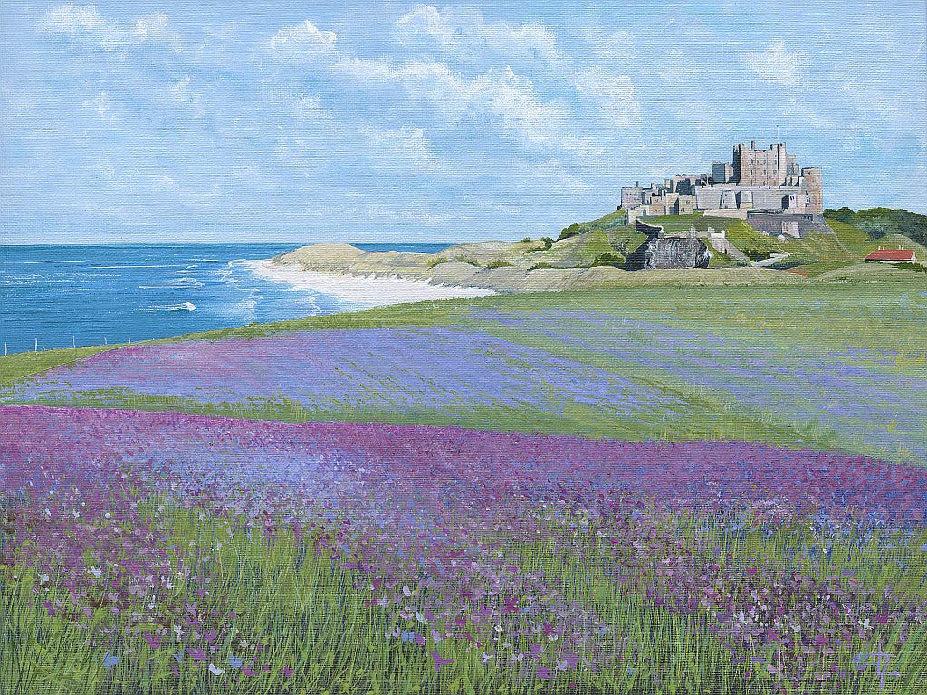 Bamburgh Castle with Red Campion