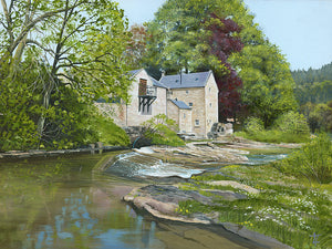 Thrum Mill Spring Reflections
