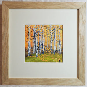 Birches in Autumn Sunshine II - Original Painting