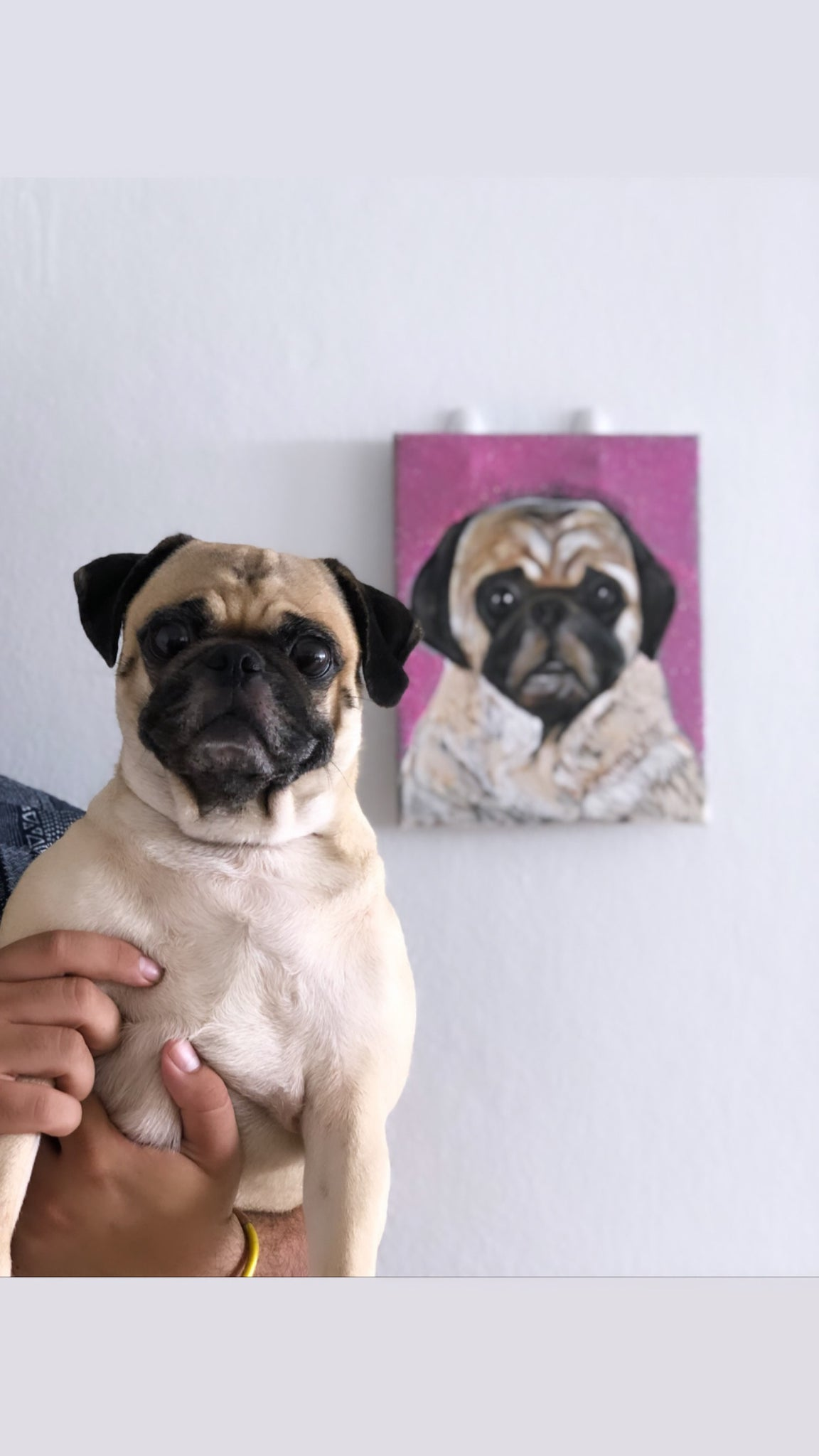 Personalizado Pet Portrait
