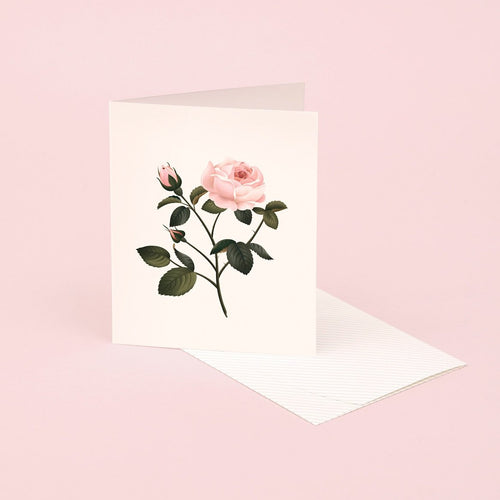 Botanical Scented Card - Rose | Paper & Cards Studio