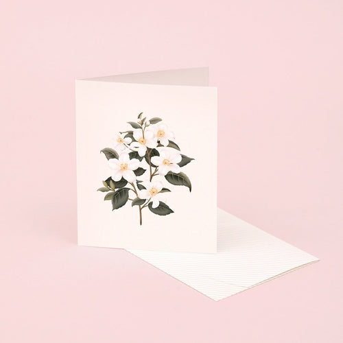 Botanical Scented Card - Orange Blossom | Paper & Cards Studio