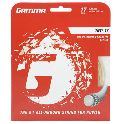 Gamma TNT2 Synthetic Strings 17 Natural