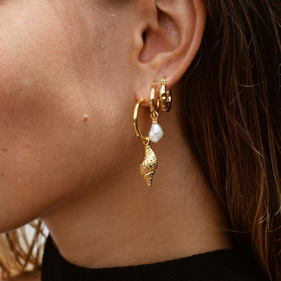 F + H - Wipeout Shell Earrings - Gold