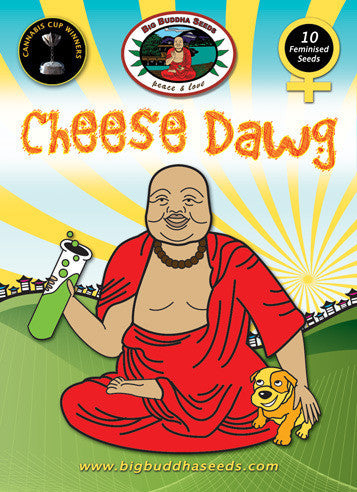 Cheese Dawg Marijuana Seeds