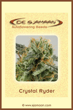 Crystal Ryder Automatic Marijuana Seeds