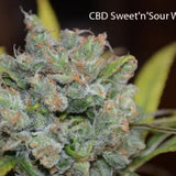 CBD Sweet 'n Sour Widow