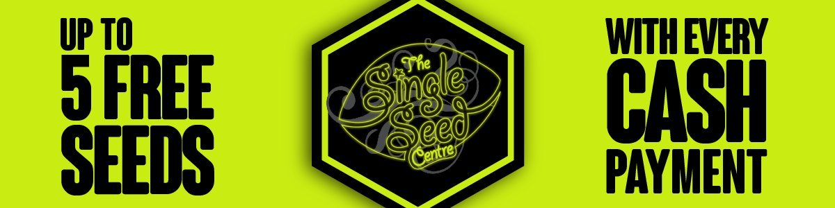 Up to 5 free seeds with cash purchases