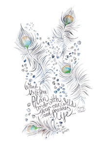 Animal Feathers with quote by Mary Oliver