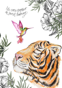 Diddi and Mo - Tiger and Hummingbird Together in Harmony Illustration