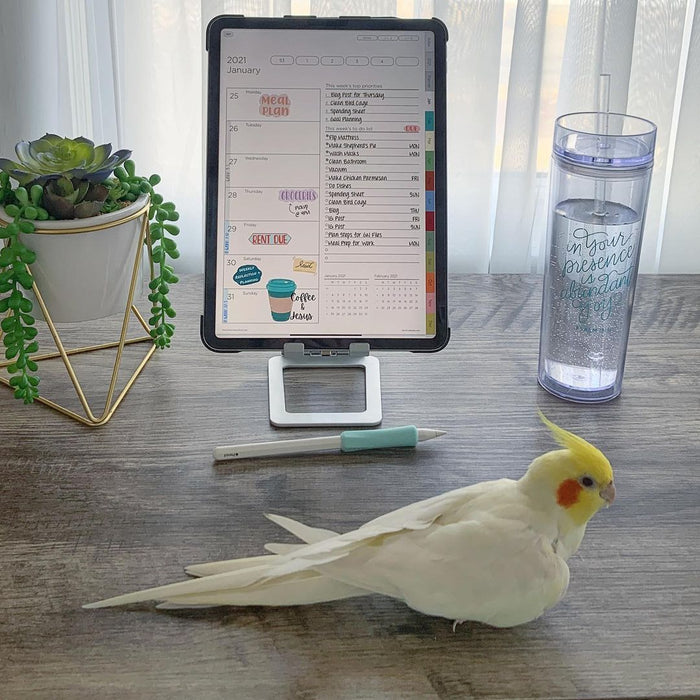 ipad pro with vertical digital planner on ipad holdar neae the bird, flower and glass of water ipadplanner.com