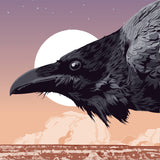 Raven at Sunset - Illustration Print - 16x20