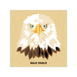 Bald Eagle - Graphic Icon Print - 8x8