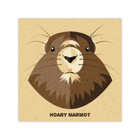 Hoary Marmot - Graphic Icon Print - 8x8