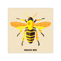Mason Bee - Graphic Icon Print - 8x8