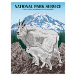 Mountain Goats at Mount Rainier Illustration Print - 18x24
