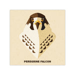 Peregrine Falcon - Graphic Icon Print - 8x8