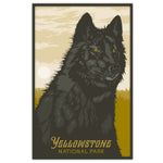 Yellowstone National Park - The Black Wolf - 11x17
