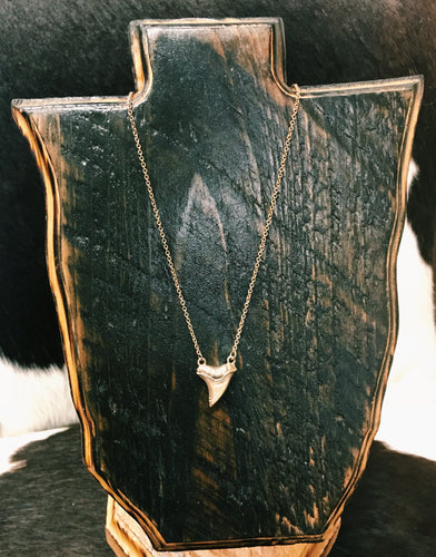 Amber Shark Tooth Necklace