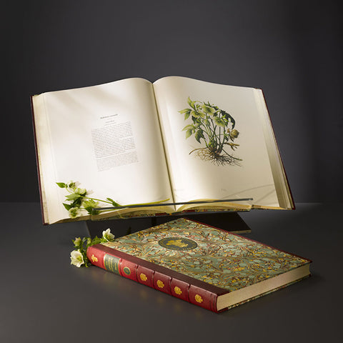 The Highgrove Florilegium