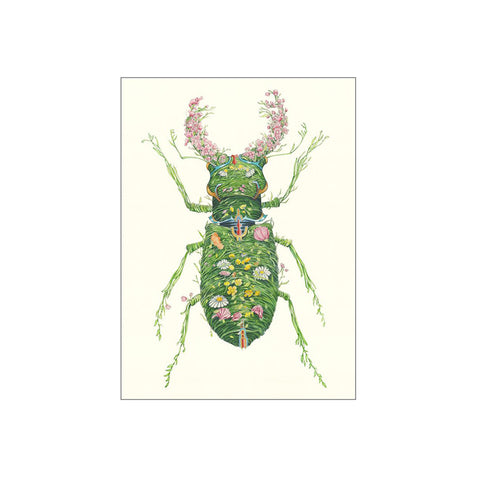 'Stag Beetle' Greeting Card