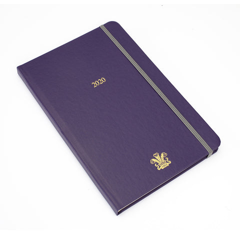 2020 Purple Diary (Large)