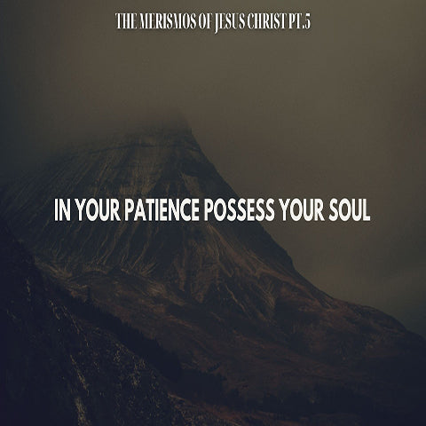 The Merismos of Jesus Christ Pt.5 - In Your Patience Possess Your Soul