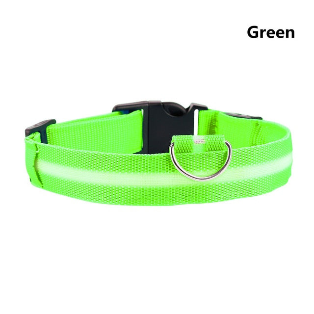 Neon LED Dog Collar