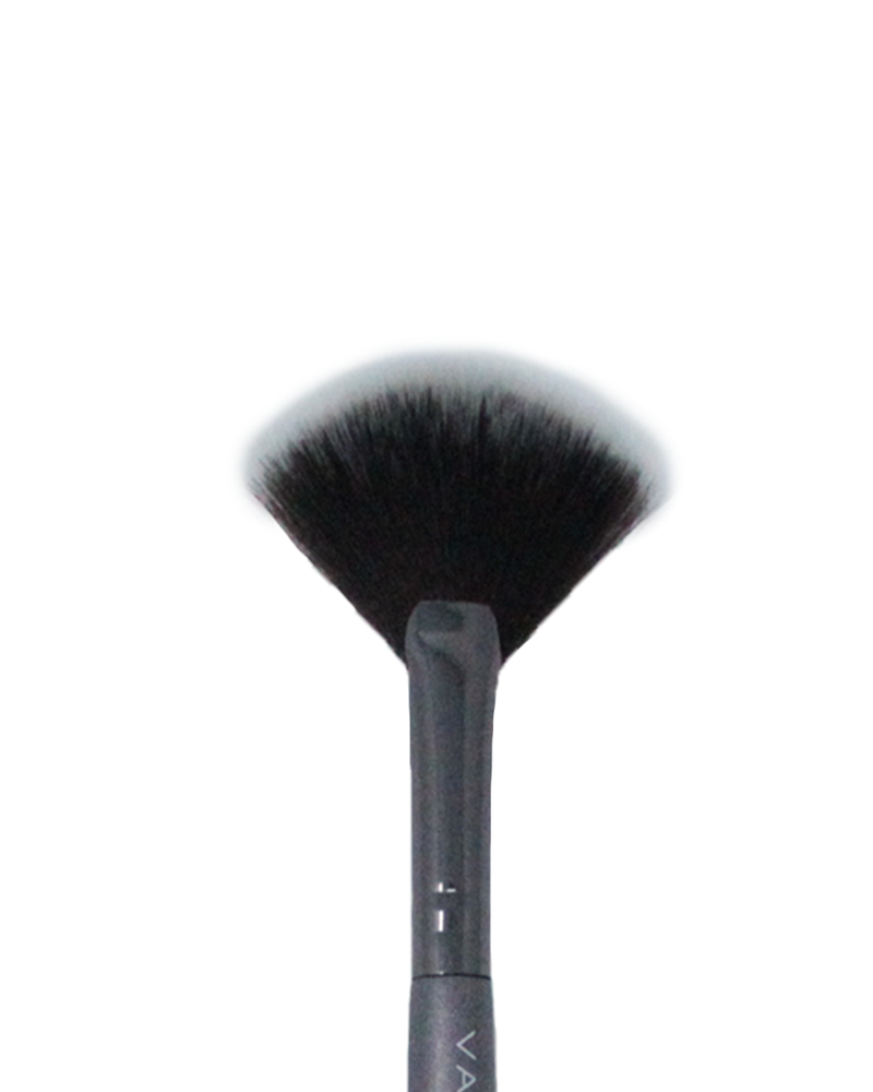 Vasanti Highlighter Fan Brush - Closeup brush head front shot