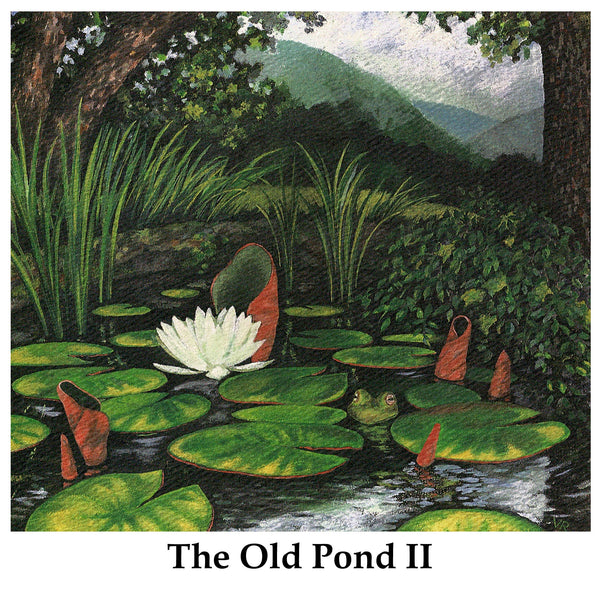The Old Pond II