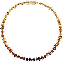 Load image into Gallery viewer, Powell's Owls Amber Teething Necklace Polished Rainbow