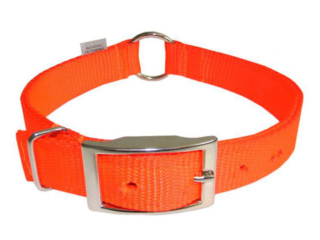 Safety Orange Dog Collar