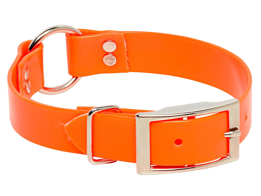 Biothane Hound Dog Collar