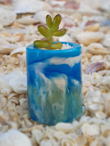Resin Sea Themed Plant Pot with Succulent #67001