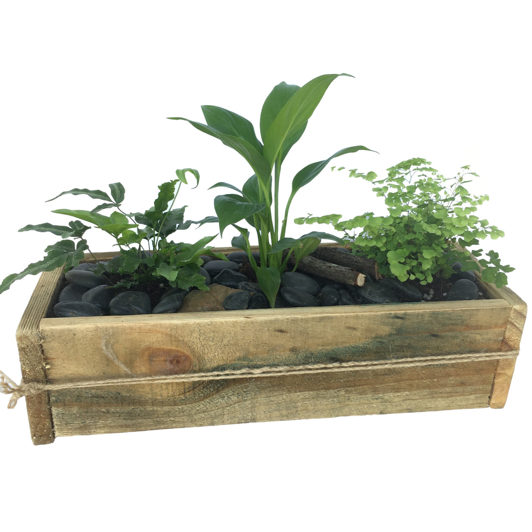 Rustic Planter Box - Medium