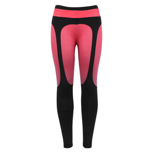 Bamboo Kitty  Women Patchwork Push Up Leggings Female Pants Sportswear Fitness Legging Activewear  Jeggings Trousers Women 2 Colors